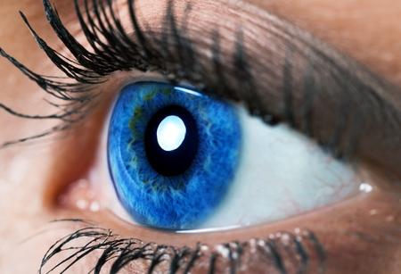 globo ocular: Ojo humano.