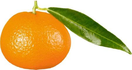 tangerine: Tangerine.