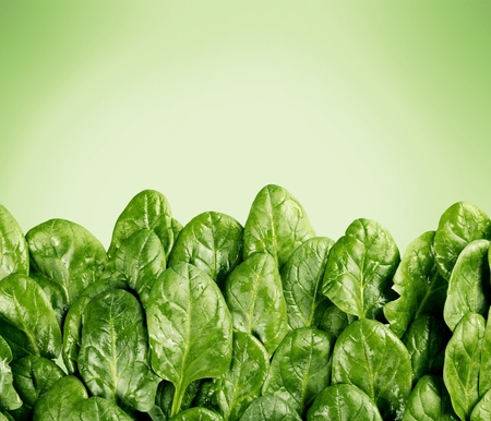 food photography: Vegetable.
