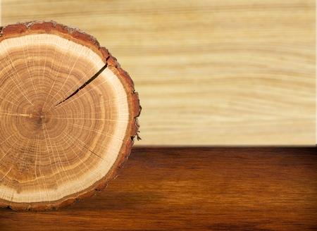lumber industry: Tree Ring.