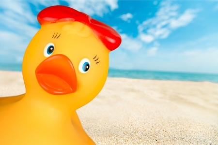 rubber: Rubber Duck. Stock Photo