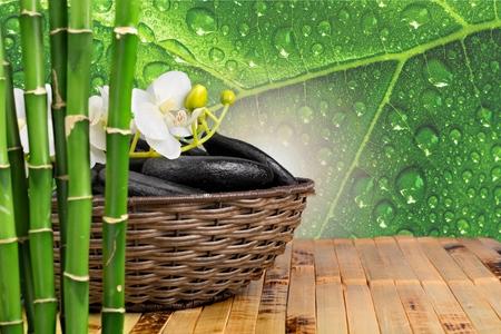 body conscious: Bamboo.