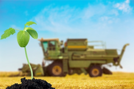 to thrive: Grow.