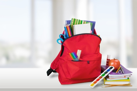apple sack: Backpack.