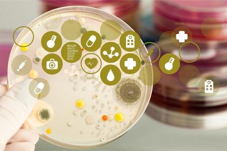 microbiologia: Microbiología. Foto de archivo