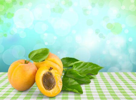 apricot: Apricot.