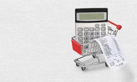 cash receipt: Budget.