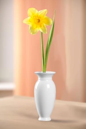 vase: Vase.