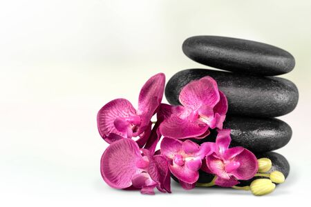 vertical wellness: Spa Treatment.