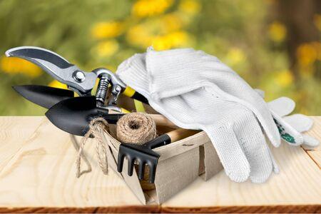 protective: Protective Glove.