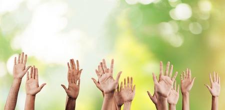 voting hands: Human Hand.