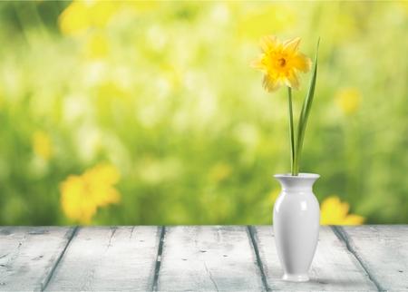lit collection: Vase.
