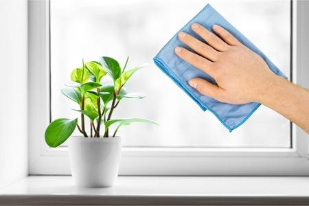 higiene: Limpio.