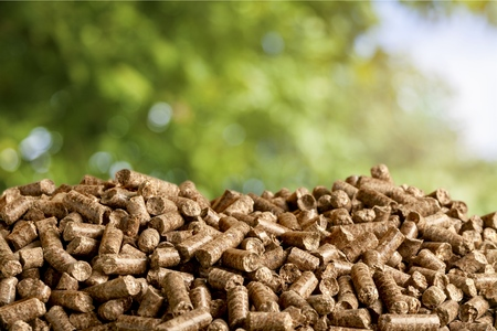Biomass. Stock Photo - 54029774