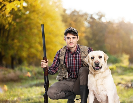 chocolate labrador retriever: Hunting.