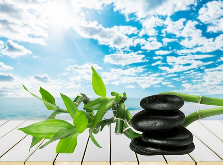 lastone therapy: Spa Treatment.