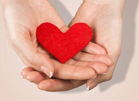 heart in hand: Heart Shape. Stock Photo