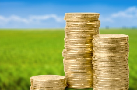 contributions: Coins. Stock Photo