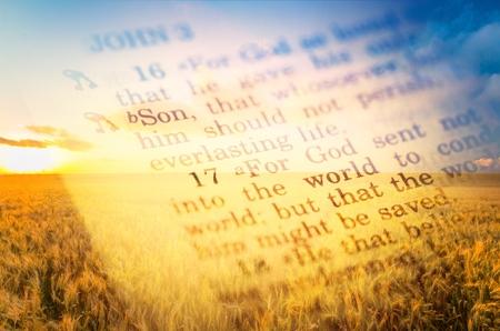 Bible. Stock fotó