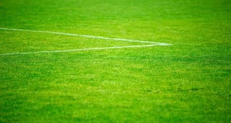 Soccer. Stock Photo