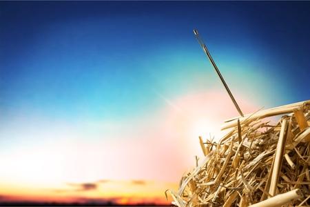 干し草の山を針します。