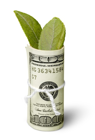 Dollar Bills with Leaves