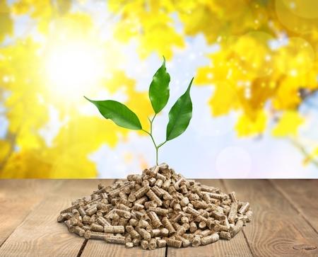 de houten pellets .ecologische verwarming