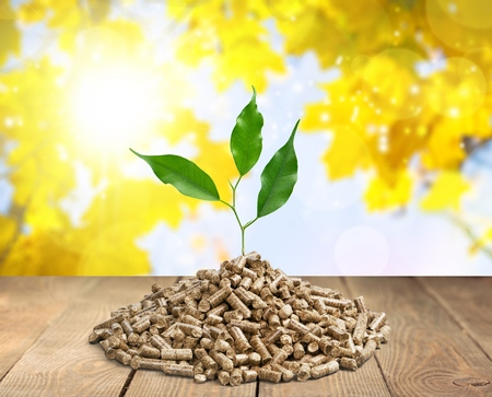 crucible: the wooden pellets .ecological heating Stock Photo