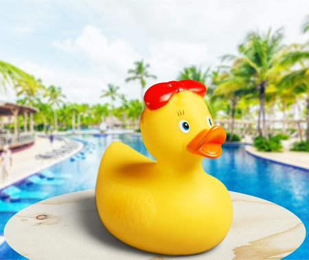 Rubber duck at swimming pool