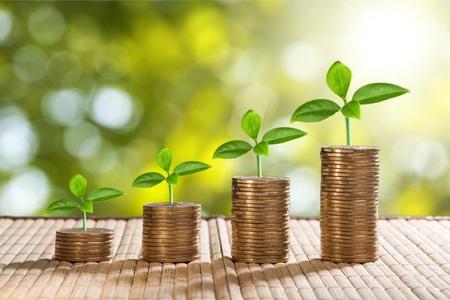 Des pièces de monnaie et de l'argent planter des plantes pour les finances et les banques, économiser de l'argent ou des intérêts en augmentant le concept Banque d'images - 90547792