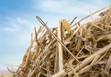 needle in a haystack Archivio Fotografico