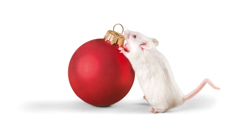 Decorative christmas ball and mouse isolated on white Stock Photo