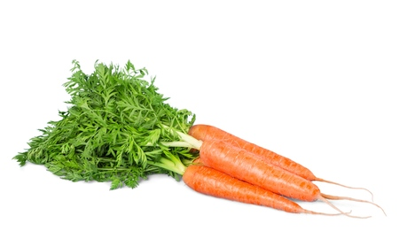 Isolated two fresh whole raw carrots on the white background