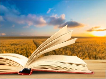 My Book(sky)