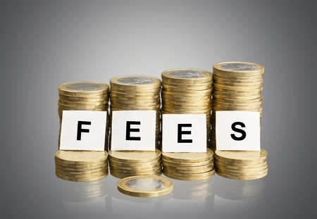 The word FEES on stacks of gold coins on a white background