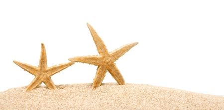 Starfish on Beach Sand. Close up Standard-Bild