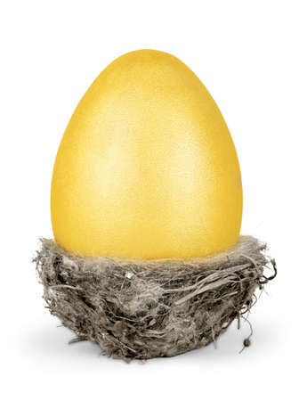 Golden Easter Egg in a Small Nest Isolated
