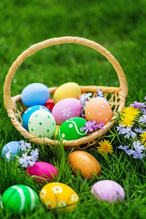 Easter Eggs and Basket on the green field