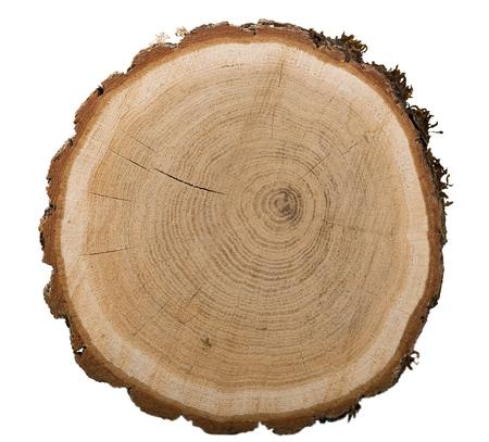 Großes kreisförmiges Stück Holz