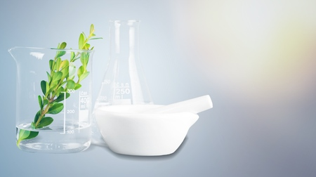 Natural organic botany and scientific glassware 스톡 콘텐츠