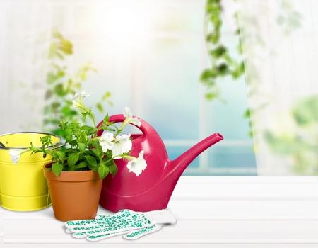 Gardening Isolated on White Hz Stock fotó