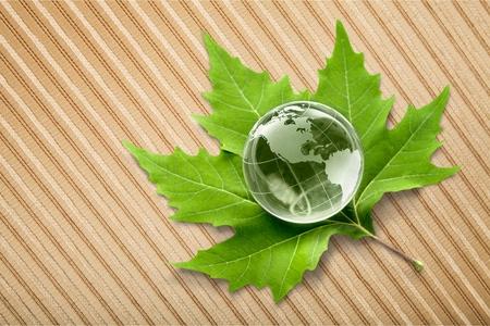 Globe on Leaf Stock Photo