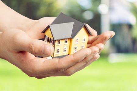 Miniature model house series