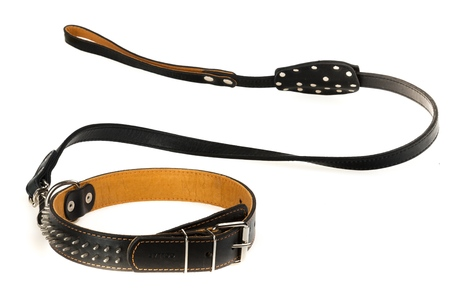 Black Dog Collar and Leash on a White Background