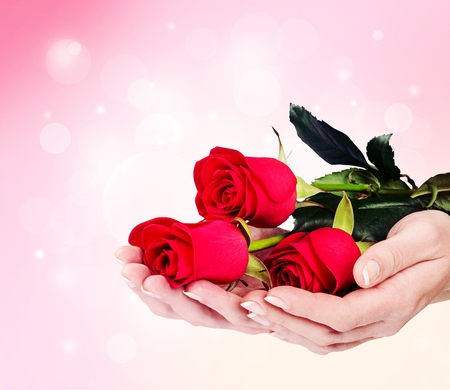 Woman hands with red roses
