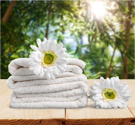 Daisy and Towels