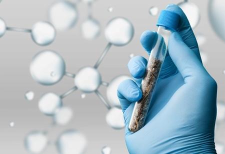 tube à essai médicale à la main