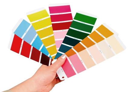 Hand Holding Color Palettes