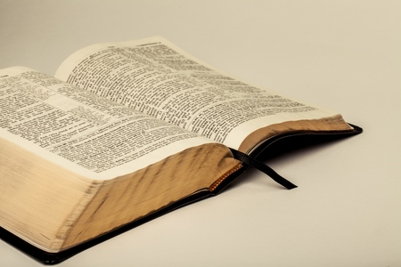 Open Holly Bible