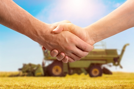 Two human shaking hands on field background